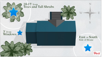 Trees and Tall Shrubs - Pin It