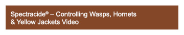 Spectracide - Controlling Wasps, Hornets & Yellow Jackets Video