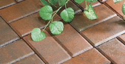 Six Easy Steps To Install Pavers