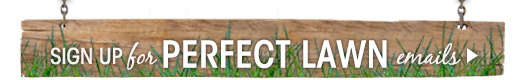 Sign Up for Perfect Lawn Email Reminders