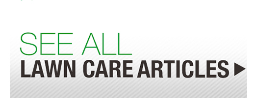See All Lawn Care Articles