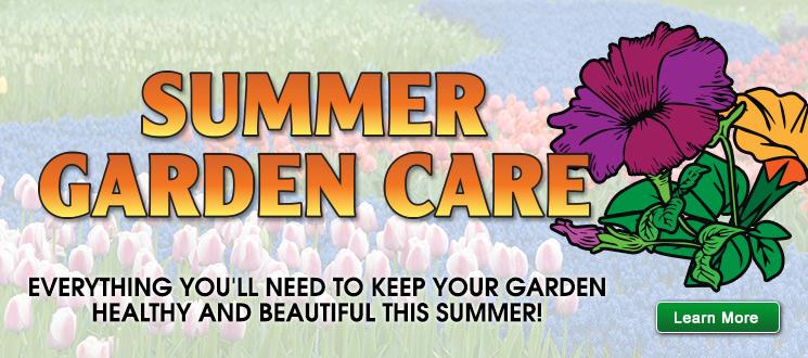 Summer Garden Care