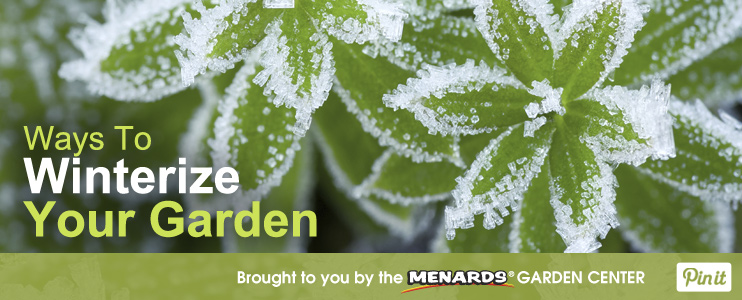 Ways to Winterize Your Garden