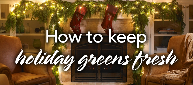 How to Keep Holiday Greens Fresh