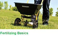 Fertilizing Basics