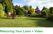 Restoring Your Lawn with Video