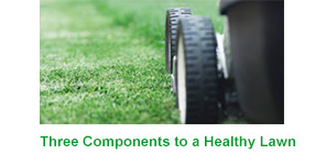 Three Components to a Healthy Lawn