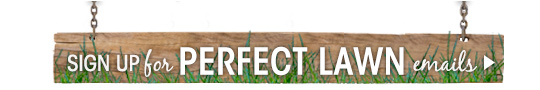 Sign Up for Perfect Lawn emails