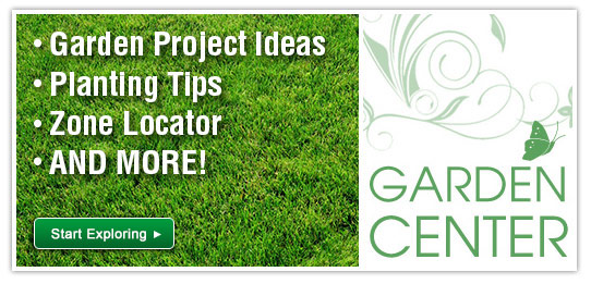 how-to-center/garden-center/c-9985.htm