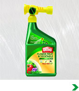Garden Insect Control