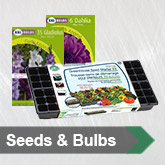 Seeds & Bulbs