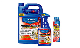 Home Pest Plus Germ Killer Indoor and Outdoor Insect Killer