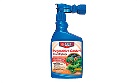 Vegetable and Garden Insect Spray