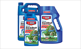 12 Month Tree and Shrub Protect and Feed II