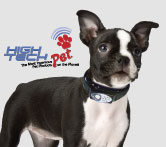 15% Off Select High Tech Pet