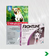 Dog Flea and Tick Care