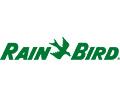 Rain Bird