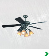 Shop Transitional Ceiling Fans