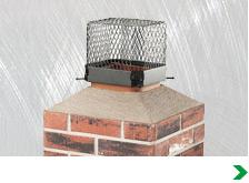 Chimney Screen (Animal Control)