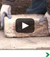 Concrete Block Tree Rings