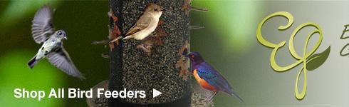 Shop All Enchanted Garden Bird Feeders