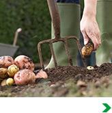 Shop All Gardening Tools