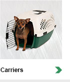 Carriers