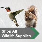 Shop All Wildlife Supplies