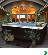 Pools, Spas, Saunas & Tanning Beds