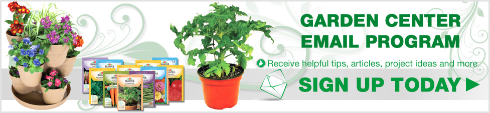 Garden Center Email Program. Sign up today to receive help tips, articles, project ideas and more.