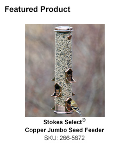 "Stokes Select<span class=""registered"">&reg;</span> Copper Jumbo Seed Feeder"