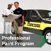 Professional Paint Program
