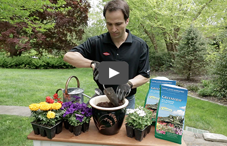 GreenView Hybrid Plant Foods Video